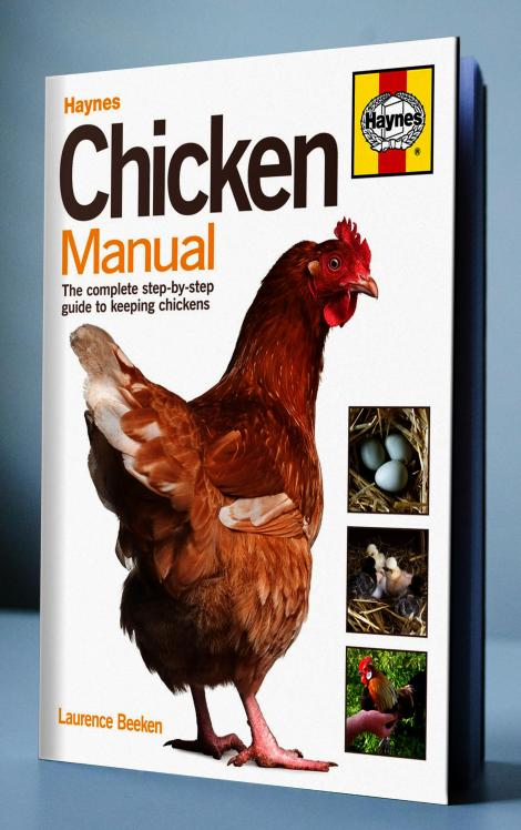 Haynes-Chicken-Book-Cover-Opt